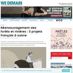 Réensauvagement des forêts et rivières : 3 projets français à suivre