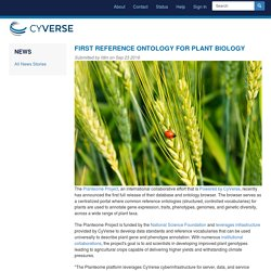First Reference Ontology for Plant Biology