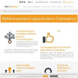 Référencement site e-Commerce: boostez vos ventes