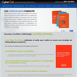 Livre Blanc Net linking   CyberCité