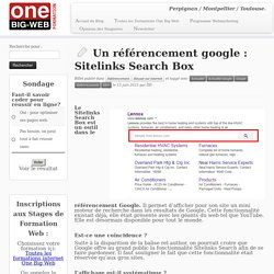 Un référencement google : Sitelinks Search Box
