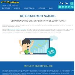 Référencement Naturel sur Internet et SEO Google