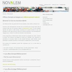 Offres d'emploi et stages en référencement naturel - Agence SEO, Novalem