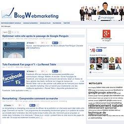 Les mots clés sont inutiles ? ~ Référencement et Webmarketing Montpellier