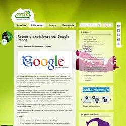 Retour d'expérience sur Google Panda, référencement google panda, bilan Google panda, nouveautés Google panda, algorithme google 2011
