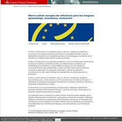 Marco común europeo de referencia para las lenguas: aprendizaje, enseñanza, evaluación.