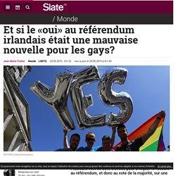 Et si le «oui» au référendum irlandais était une mauvaise nouvelle pour les gays?
