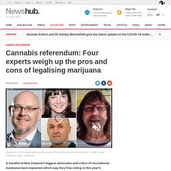 Cannabis referendum: Four experts weigh up the pros and cons of legalising marijuana