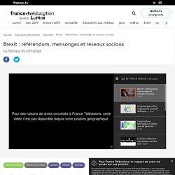 Brexit : référendum, mensonges et réseaux sociaux - Vidéo