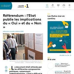 Référendum : l'Etat publie les implications du « Oui » et du « Non » - Nouv