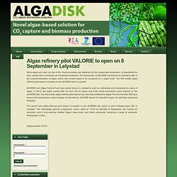 Algae refinery pilot VALORIE to open on 8 September in Lelystad