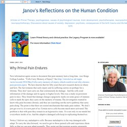 Janov's Reflections on the Human Condition: Why Primal Pain Endures