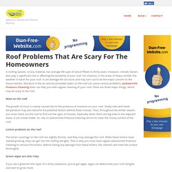 reflectionsjax - Roof Problems That Are Scary For The Homeowners