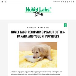 NuVet Labs: Refreshing Peanut Butter-Banana and Yogurt Pupsicles