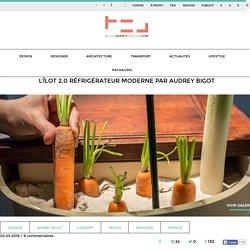 L'îlot 2.0 réfrigérateur moderne par Audrey Bigot