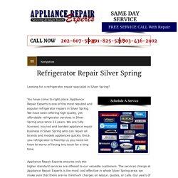 Refrigerator Repair Silver Spring