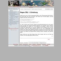 Reguläre Ausdrücke TB (deutsch)