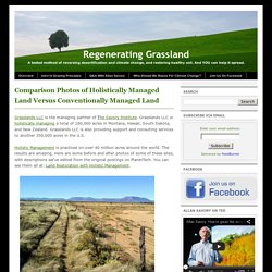 Regenerating Grassland: Comparison Photos of Holistically Managed Land Versus Conventionally Managed Land