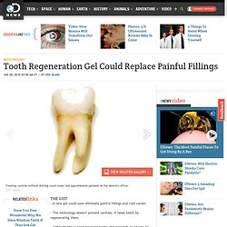 Tooth Regeneration Gel Could Replace Painful Fillings