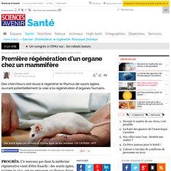 Première régénération d'un organe chez un mammifère