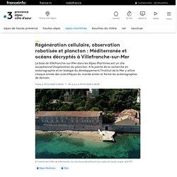 Régénération cellulaire, observation robotisée et plancton : Méditerranée et océans décryptés à Villefranche-sur-Mer