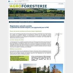 Régénération Naturelle Assistée - Association Française d'agroforesterie