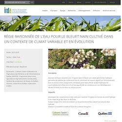 IRDA - Projet de recherche 2015-2019 - RÉGIE RAISONNÉE DE L'EAU POUR LE BLEUET NAIN CULTIVÉ DANS UN CONTEXTE DE CLIMAT VARIABLE ET EN ÉVOLUTION