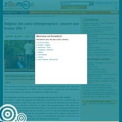 Régime des auto-entrepreneurs : encore une bonne idée ? sur zoomdici.fr (Zoom43.fr et Zoom42.fr)