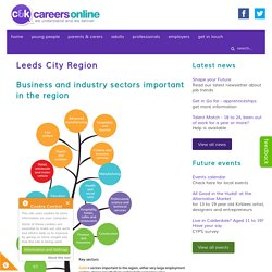 Leeds City Region - C&K Careers info and advice site for all ages - ckcareersonline