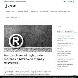 Puntos clave del registro de marcas en México, ventajas y relevancia