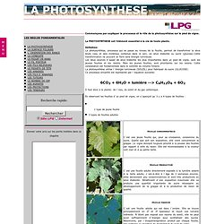 Régle 1 La PHOTOSYNTHESE