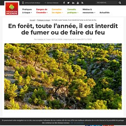 Règlementation du feu en forêt - Prévention Incendie Forêt