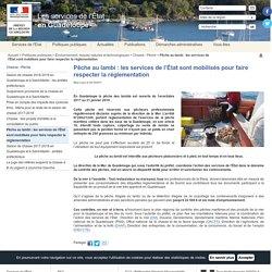 Pêche au lambi : les services de l'État sont mobilisés pour faire respecter la réglementation / Chasse - Pêche / Environnement, risques naturels et technologiques / Politiques publiques / Accueil - Les services de l'État en Guadeloupe
