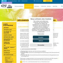 Règlementations Santé Sécurité Environnement - CMA NC