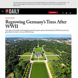 Regrowing Germany's Trees After WWII
