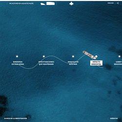Cruceros con menos regulación ambiental que un buque de guerra - Univision