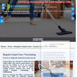 Regular Carpet Care: Vacuuming