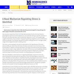 A Novel Mechanism Regulating Stress is Identified