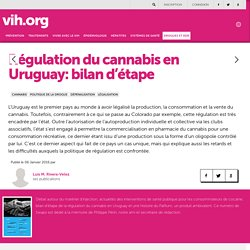Régulation du cannabis en Uruguay: bilan d'étape