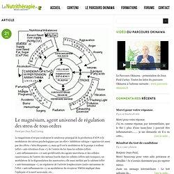 Le magnésium, agent universel de régulation des stress de tous ordres