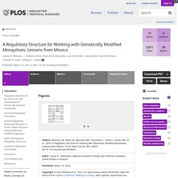 PLOS 13/03/14 A Regulatory Structure for Working with Genetically Modified Mosquitoes: Lessons from Mexico