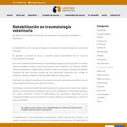 Rehabilitación en traumatología veterinaria; fisioterapia