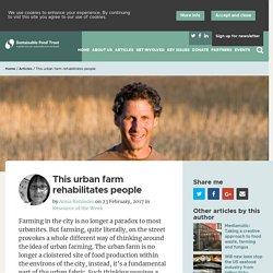This urban farm rehabilitates people - Sustainable Food Trust - Sustainable Food Trust