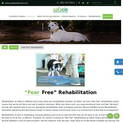 Affordable Rehabilitation Stem Cell Therapy Hospital for Pets in League City TX.