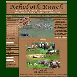 Rehoboth Ranch - Home