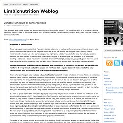 Variable schedule of reinforcement — Limbicnutrition Weblog