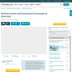 Reinforcement and Punishment: Examples & Overview