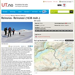 Reinsnos- Reinsnosi (1638 moh.)