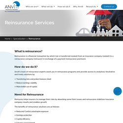 Reinsurance Consulting Services
