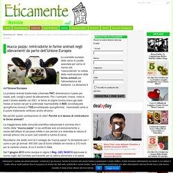 Mucca pazza: reintrodotte le farine animali negli allevamenti da parte dell'Unione Europea